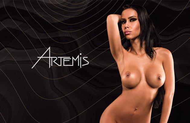 http www fkk artemis de