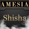 Shisha - Oriental Feeling! im Amesia
