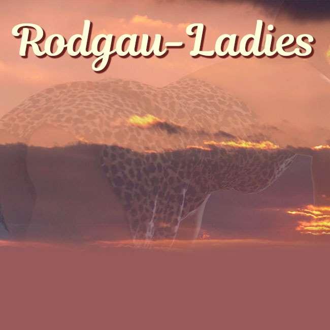 A Rodgau hölgyek házvezetőt keresnek