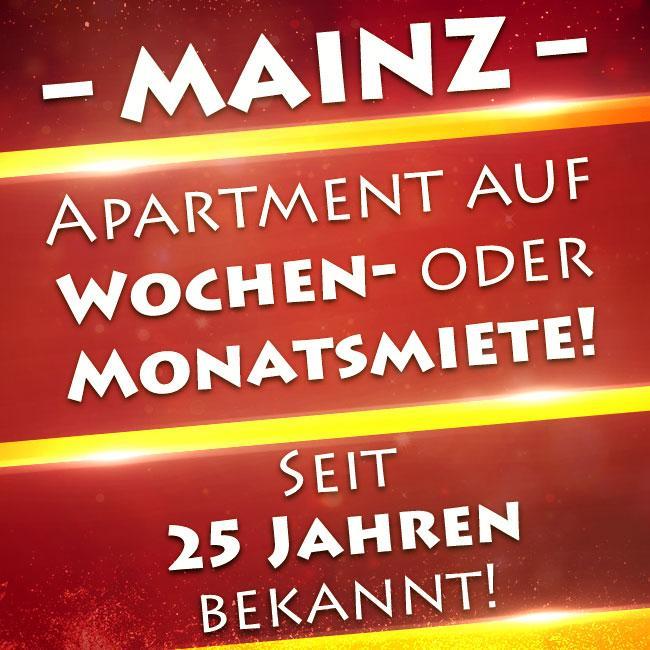 Nice 1 bedroom apartment in Mainz for rent!