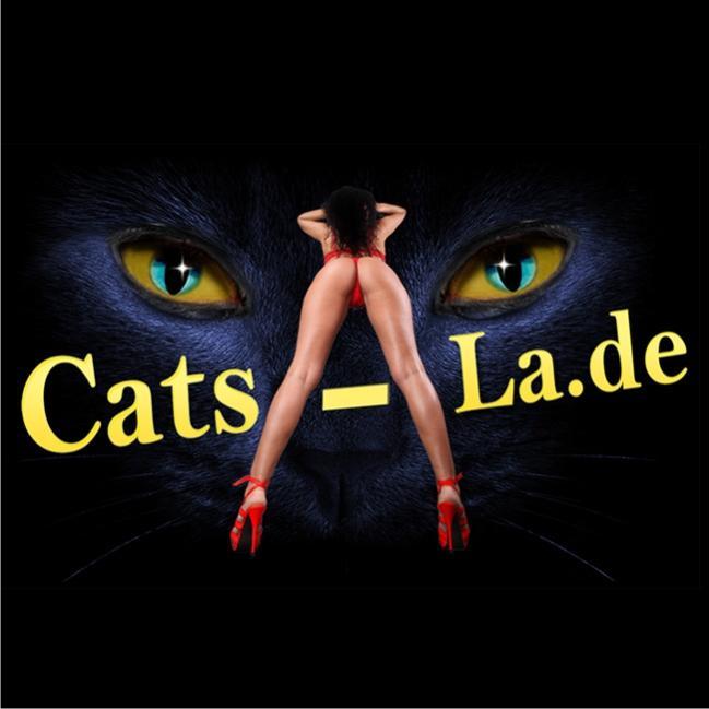 Cats-La NETTE MODELLE GESUCHT